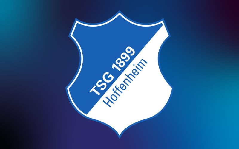 Kunden - Logo TSG Hoffenheim
